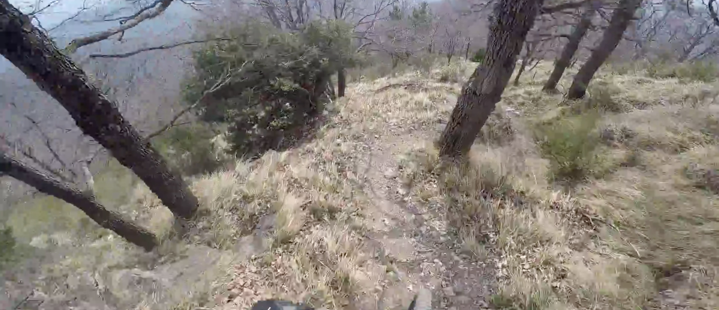 Vidéo / La SP1 du Bévérally en cam' embarquée