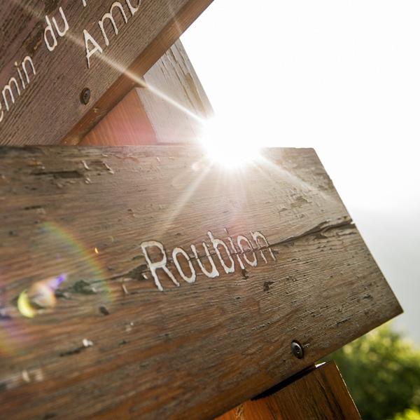 Bikepark de Roubion: ouverture le 6 mai & programme bien chargé