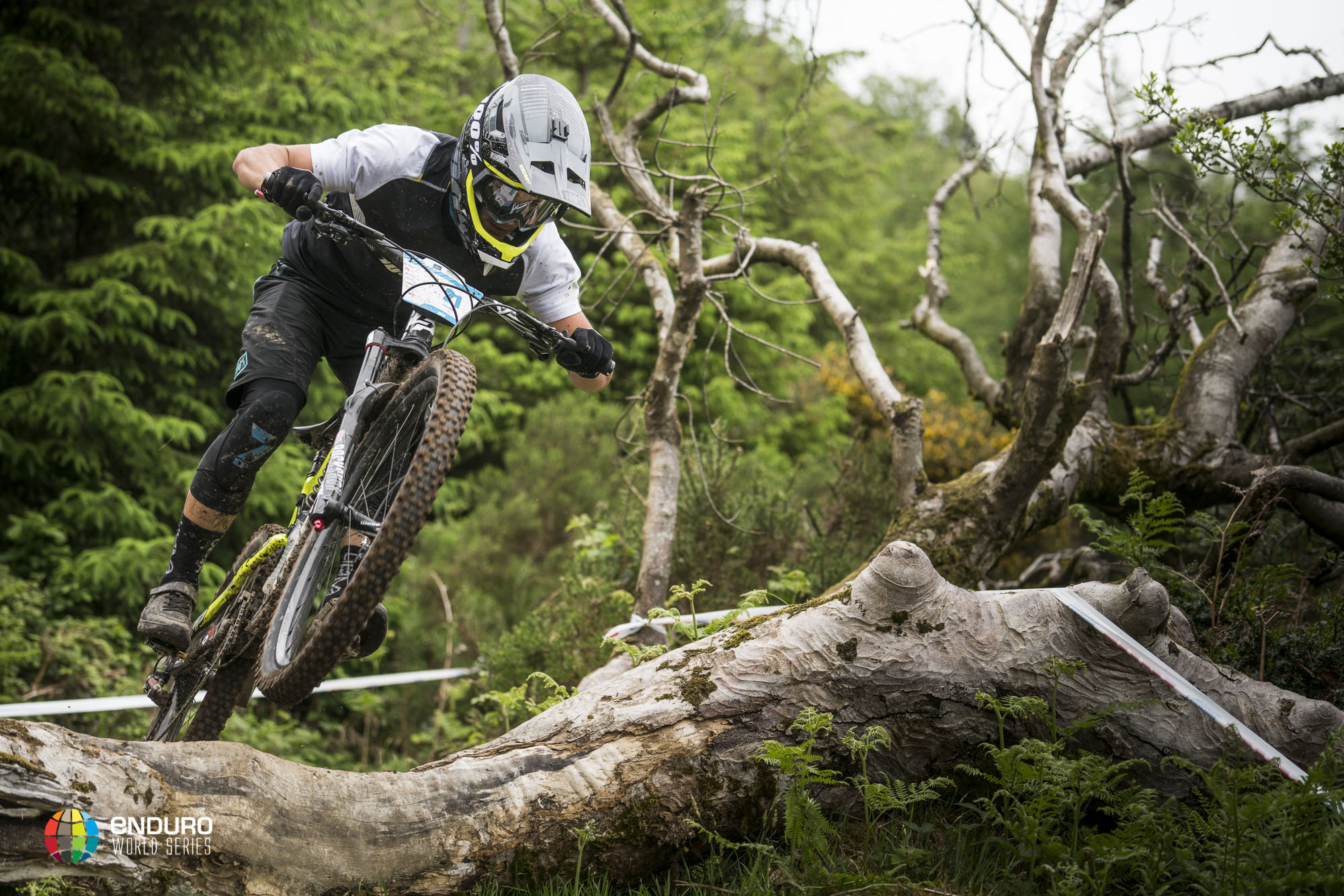 The young frenchman is showing such racing experience, Adrien Dailly picked up his second round win here in Ireland