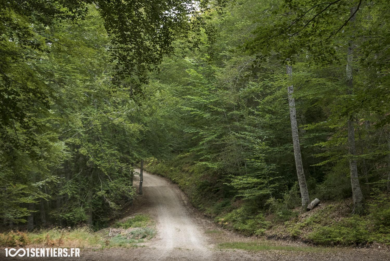 site vtt parc monts azur st auban 1001sentiers_P1160372