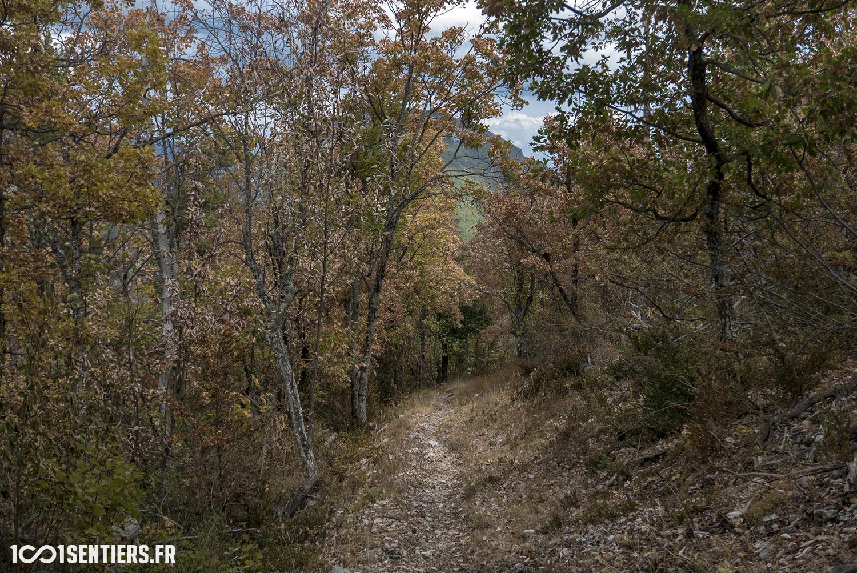 site vtt parc monts azur st auban 1001sentiers_P1160387