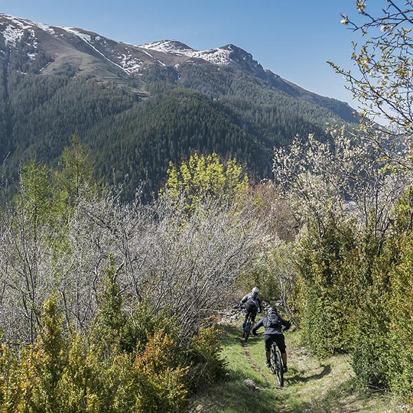 Riding: rêver des plaisirs VTT post-pandémie