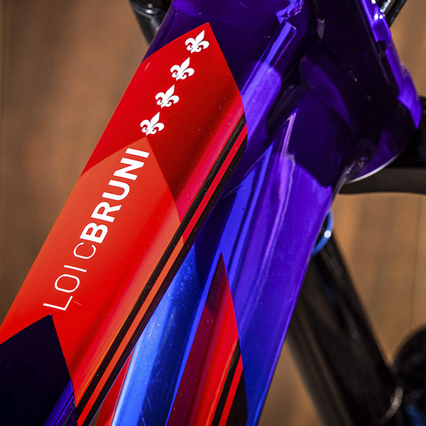 Bijou: le vélo champion du monde de Loïc Bruni