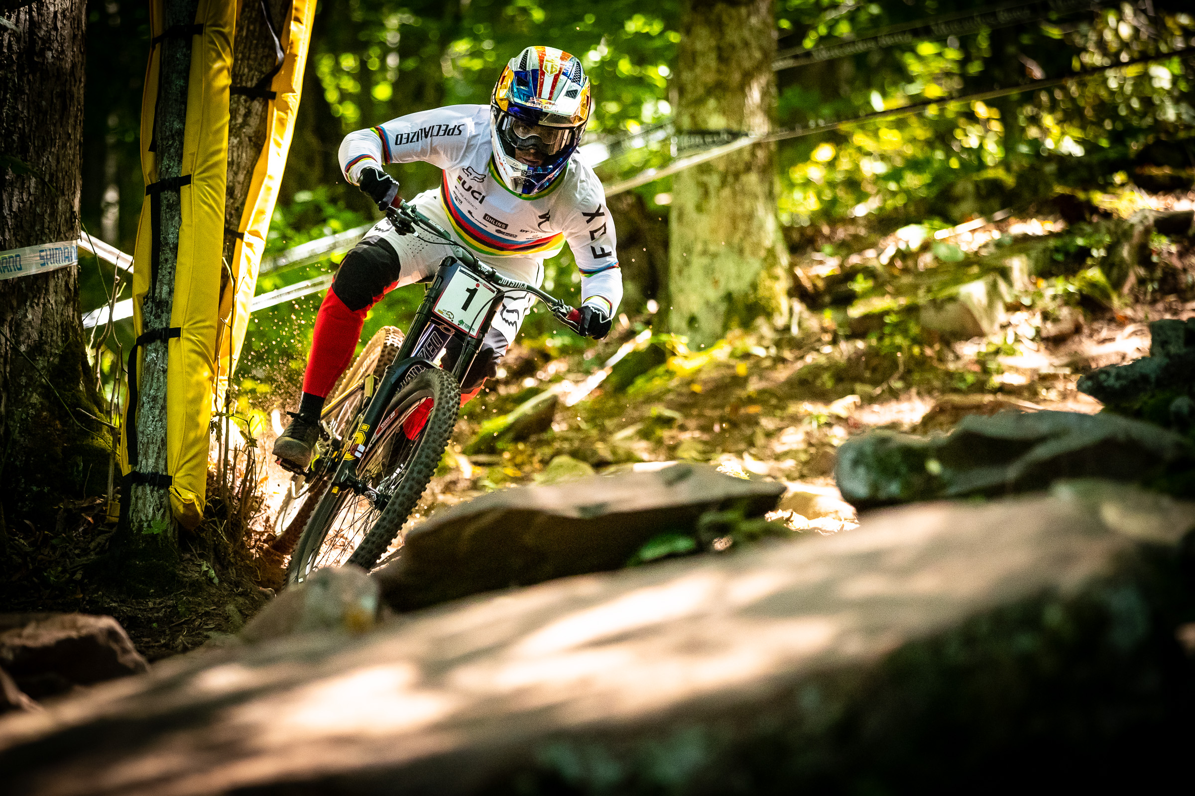 world cup dh snowshoe 2019 bruni 1