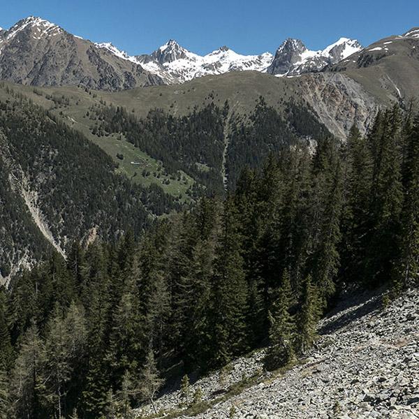 Juillet: Aventure(s) Alpine(s) mémorable(s) en Vésubie