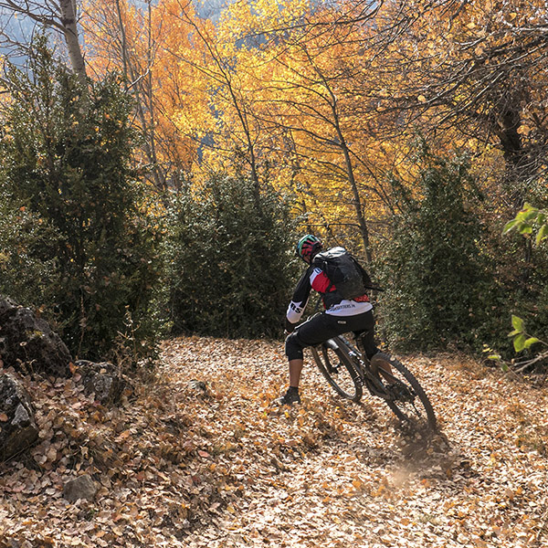 Riding: l'automne arrive avec son lot de plaisirs