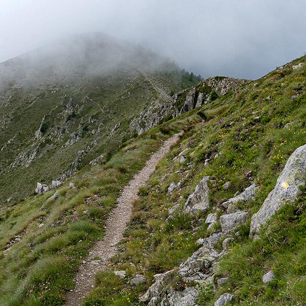 Aventure Alpine : Redécouvrez les merveilles de la Vésubie